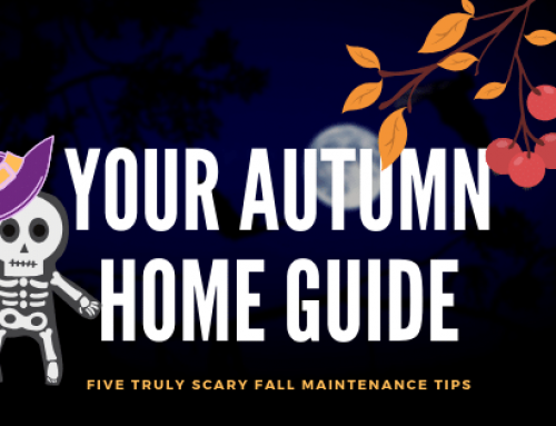 Five TRULY SCARY Fall Maintenance Tips!
