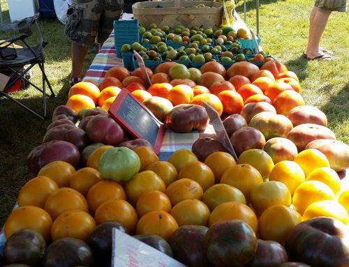 NoDa's Farmers Market